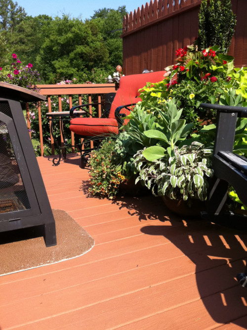 Encore Wood Deck Protectant, Coating, and Finish